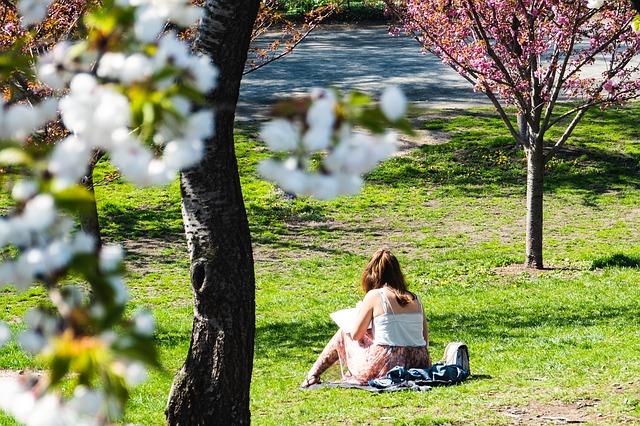 Central Park im Frühling (Retrieved from Pixabay - Samuel Stone)