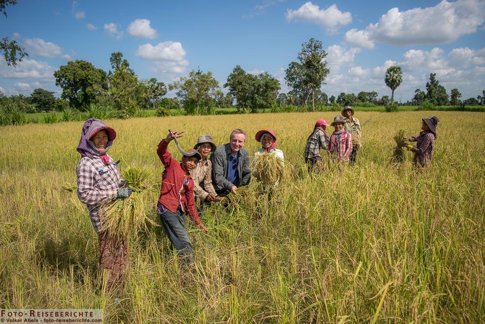 Reisernte Kambodscha-www.foto-reiseberichte.com