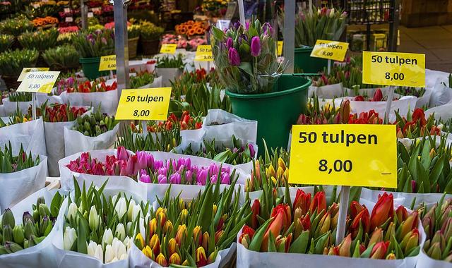 Bloememarkt (Retrieved from Flickr - Guillén Pérez)