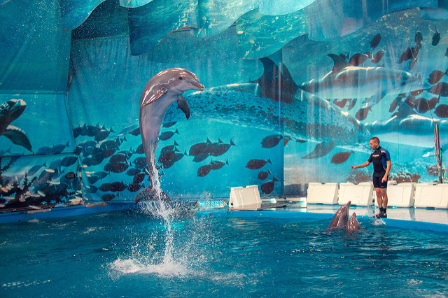 Aquarium de Barcelona (Retrieved from Flickr - Juanedoc)
